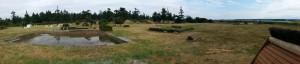 It really is a beautiful field.